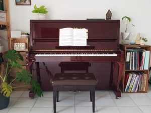 Piano Lessons in River Valley Somerset Singapore